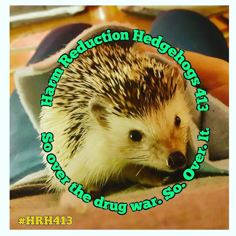What is HRH413 - HARM REDUCTION HEDGEHOGS OF 413located in Western MA was founded by Jess Tilley and Albie Park. Between the two of them, they have over 40 years experience in Harm Reduction. HRH413 is developing a peer led street outreach model and plan to serve both urban and rural communities. Our focus is to reach people who use drugs who cannot or will not use traditional brick and mortar syringe access sites.  We offer best practice trainings and consultation on a broad range of topics including naloxone. Notably, Jess Tilley is the only person distributing Fentanyl test strips in the entire state of MA. Please contact us with any questions.Please be patient as we continue to edit and improve our site.
