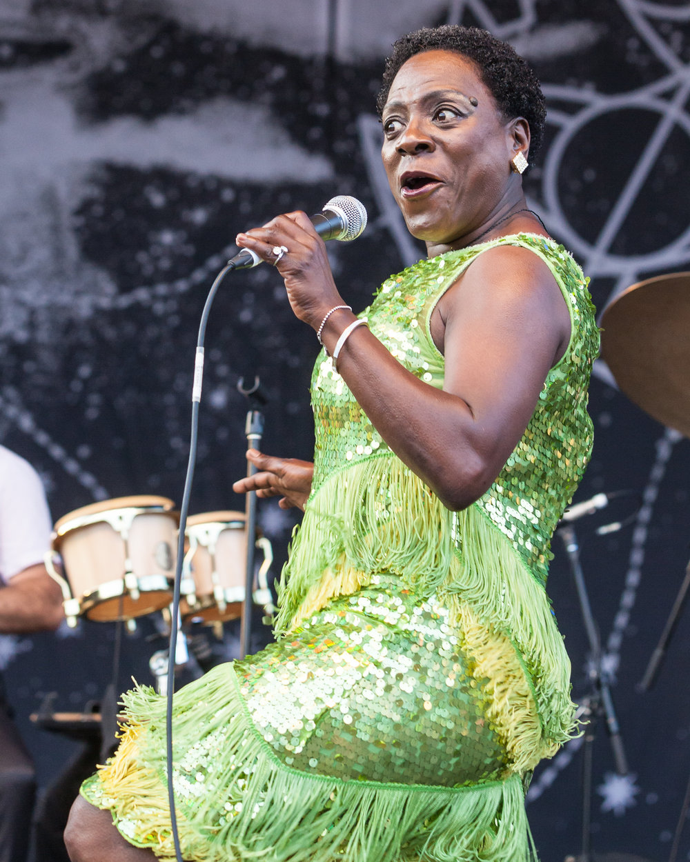 150815MattDuboff-Sharon Jones-5839.jpg