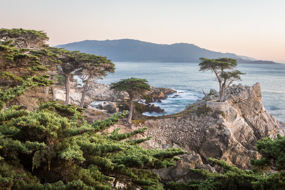 Cypress Point, Monterey, California [December, 2017]
