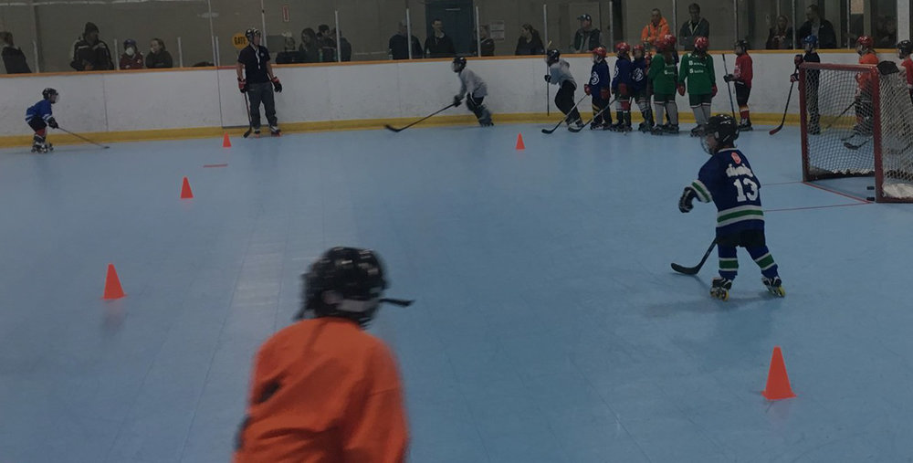 Try us out? - New to roller hockey? Want to give it a shot and see what the buzz is all about? Our Learn2Roll program offers a chance for newbies of all ages to give our sport a dry run.
