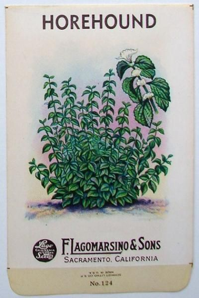 b67c4164819e652fafce1c510789c397--herb-labels-vintage-seed-packets.jpg