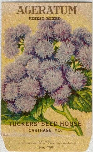 feef44af2cf999eed60d8ce0dc98a65d--vintage-seed-packets-seed-catalogs.jpg