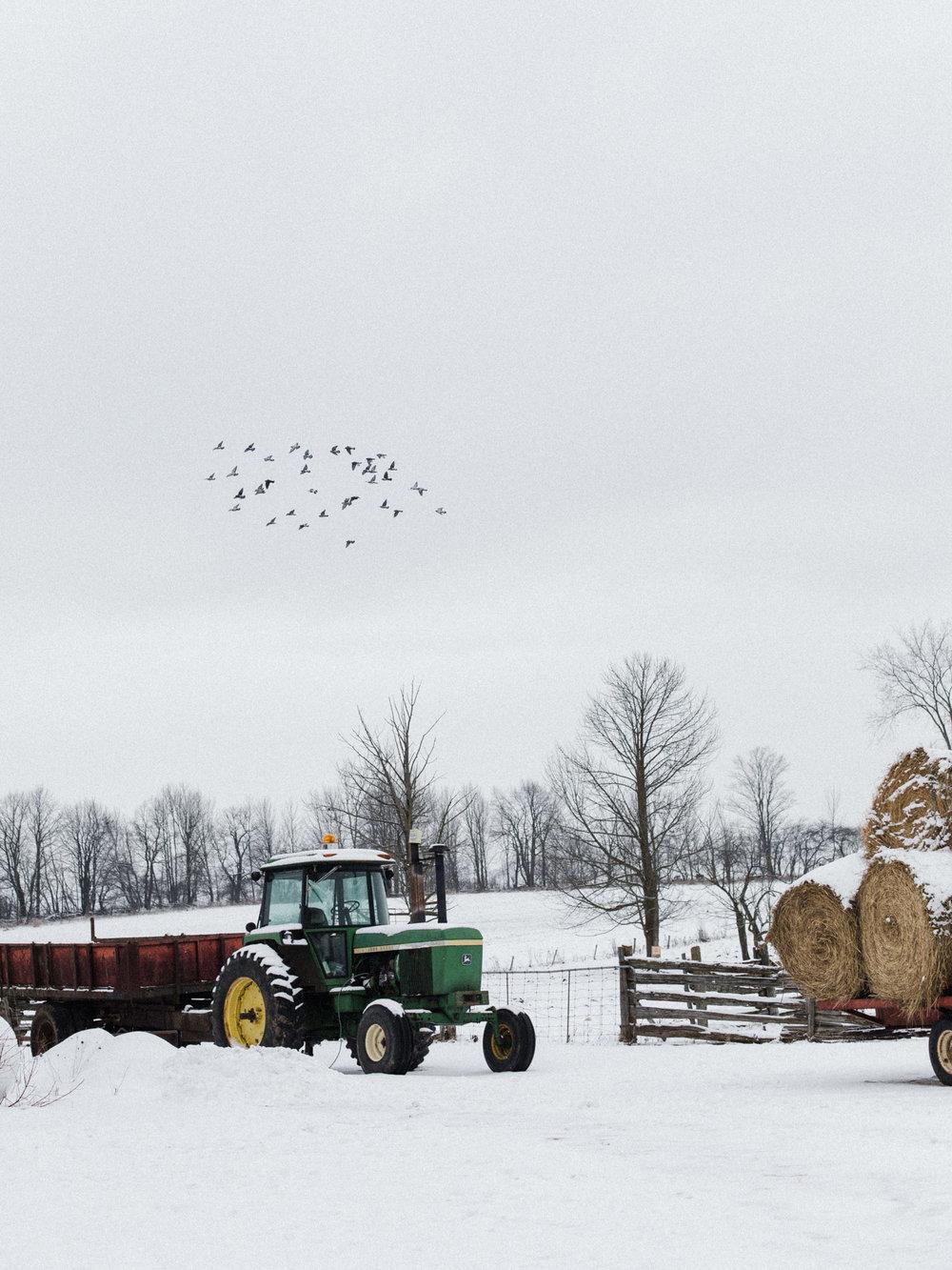 becker-farm-49.jpg