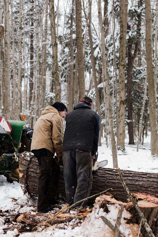 becker-farm-67.jpg