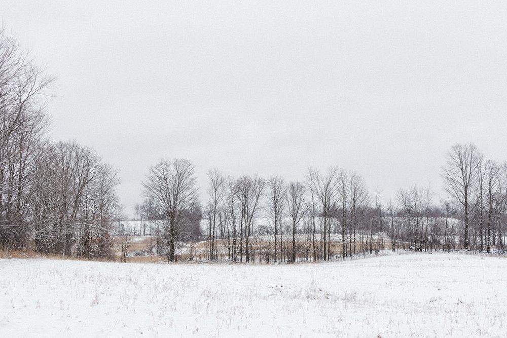 becker-farm-111.jpg