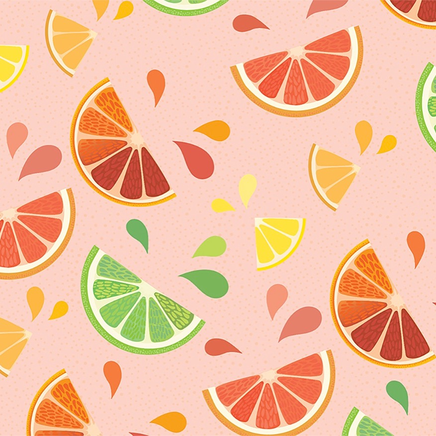 Illustration   for Bi-Rite Market's CA Citrus Campaign