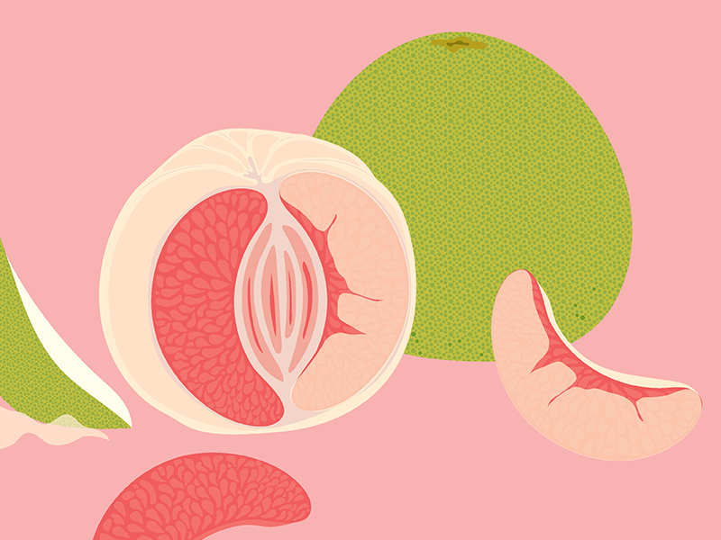Illustration   for Bi-Rite Market's Produce Department