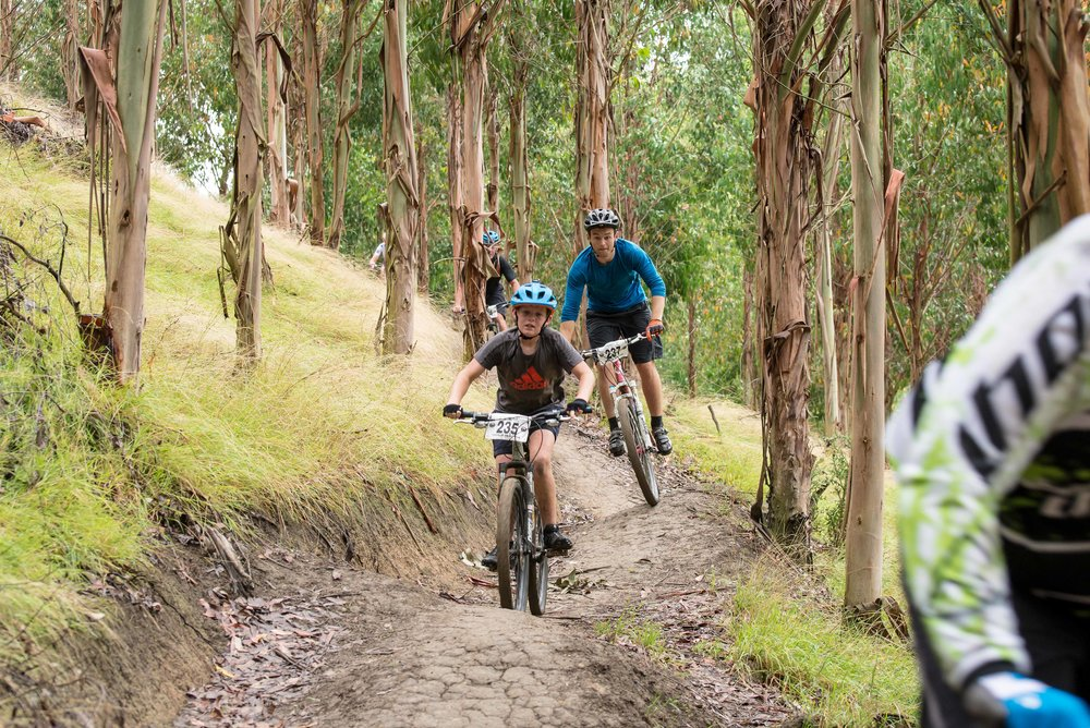Gum Tree Mountain Bike Park