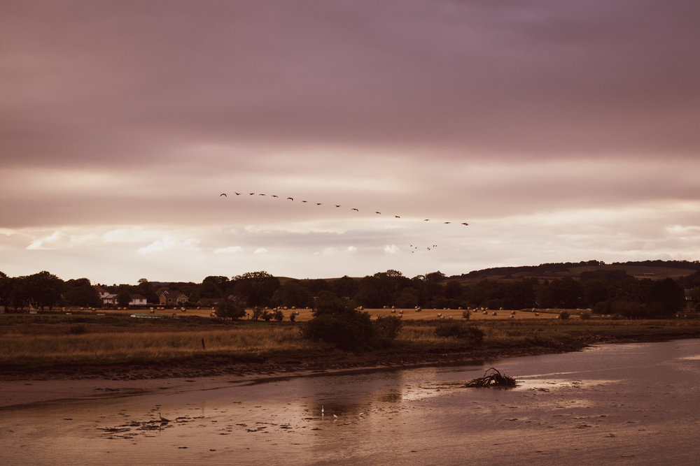 Alnmouth 1 (1 of 1).jpg