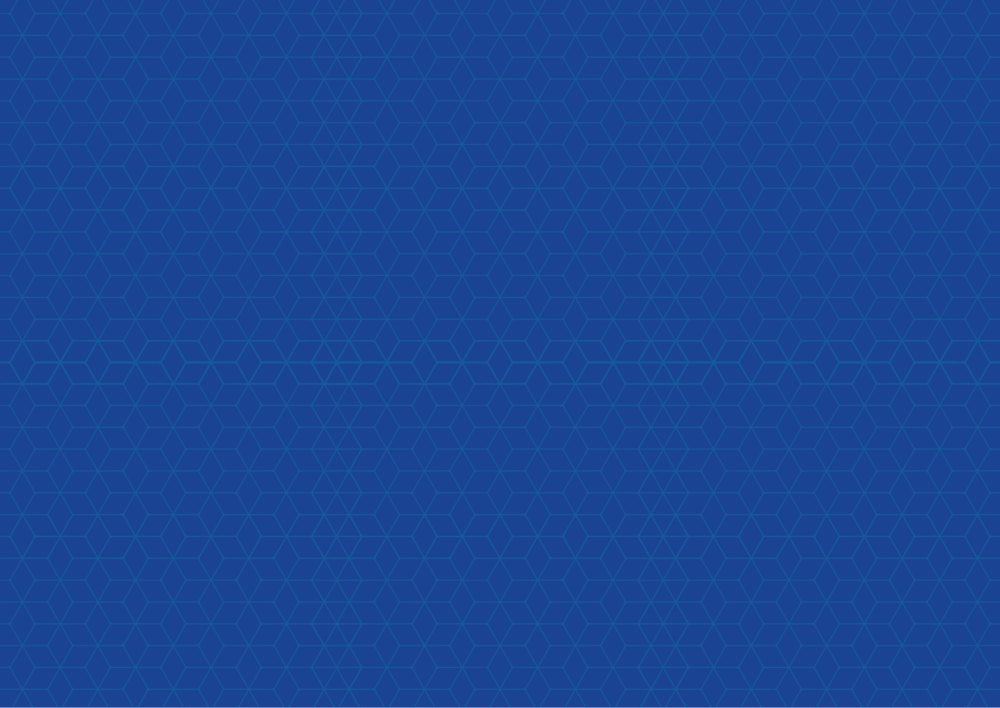 Ashe_pattern.png