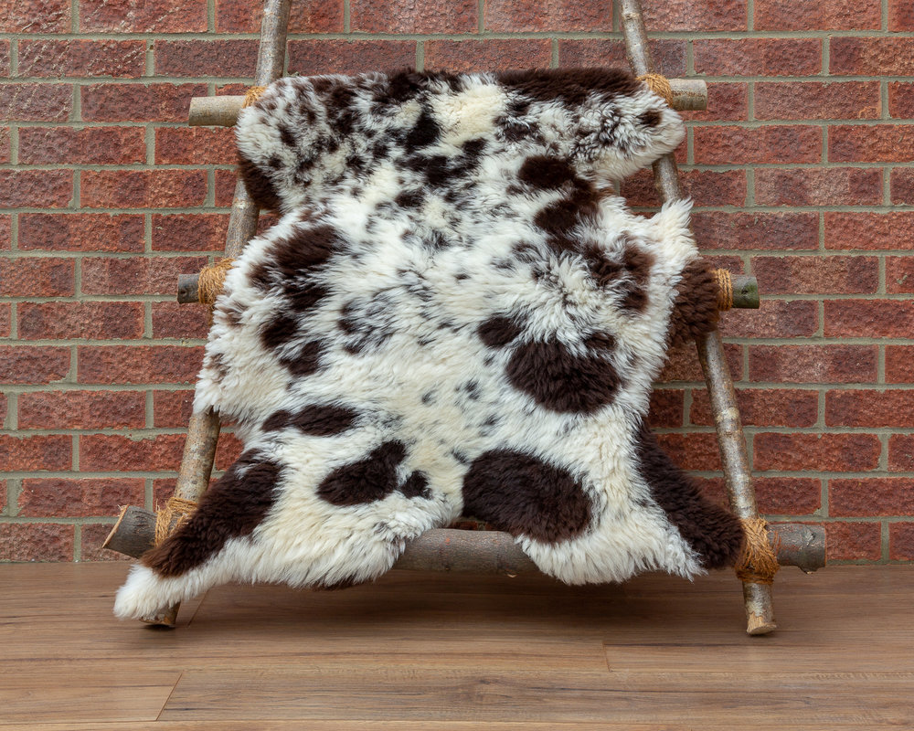 Shorn Jacob sheepskin rug
