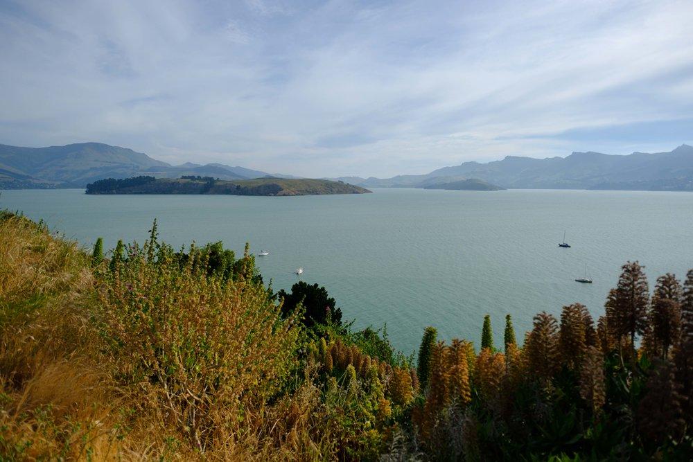 Cass Bay Lyttelton New Zealand
