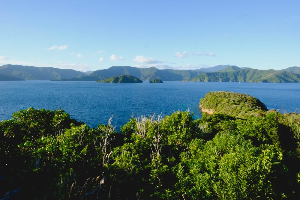 Marlborough Sounds - According to Maori Legend, the Marlborough Sounds were formed when Kupe, a great Maori warrior, was chasing a giant octopus and finally caught it in Cook Straight, where it formed the waterways & headlands now known as the Marlborough Sounds..