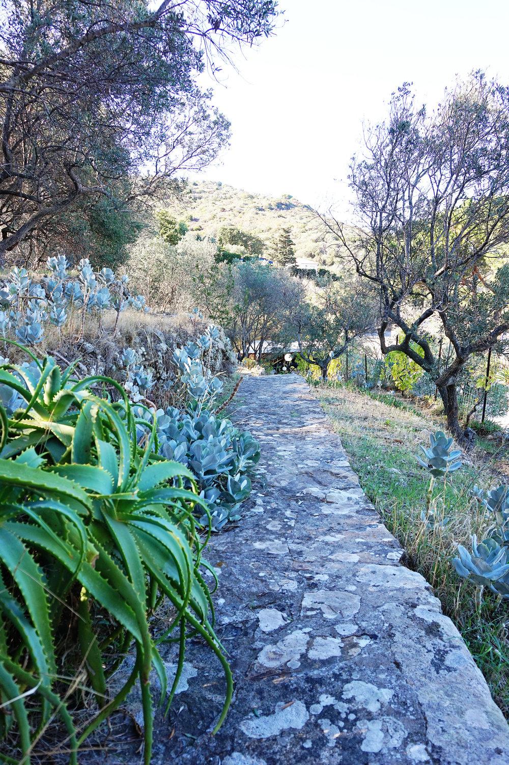 Villa pathway garden
