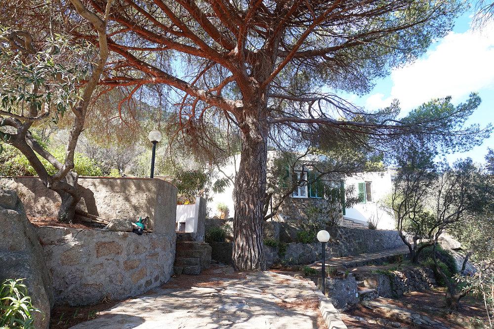 Copy of Villa garden