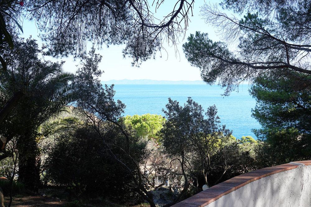 Giglio Villa garden view