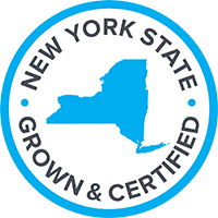 nys_logo_transparent.png
