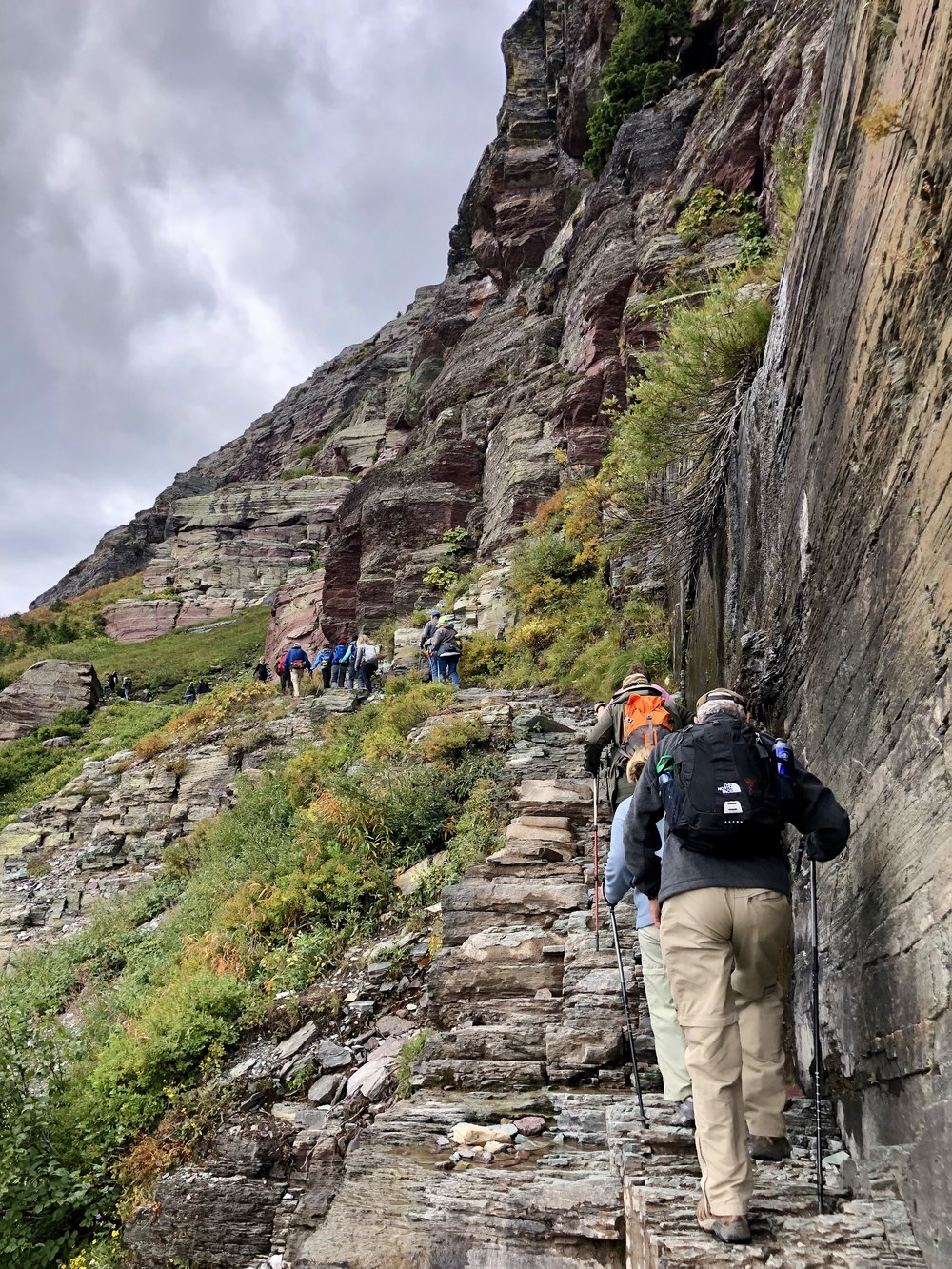Grinnell Glacier trail. It's steep! My panting kept the bears away.
