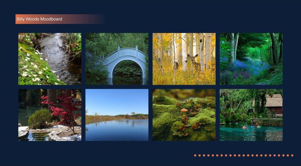 billy woods moodboard_Page_03.jpg