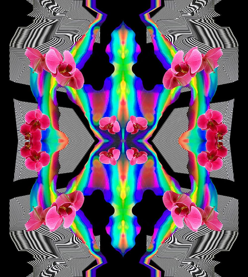 digital work 2.jpg