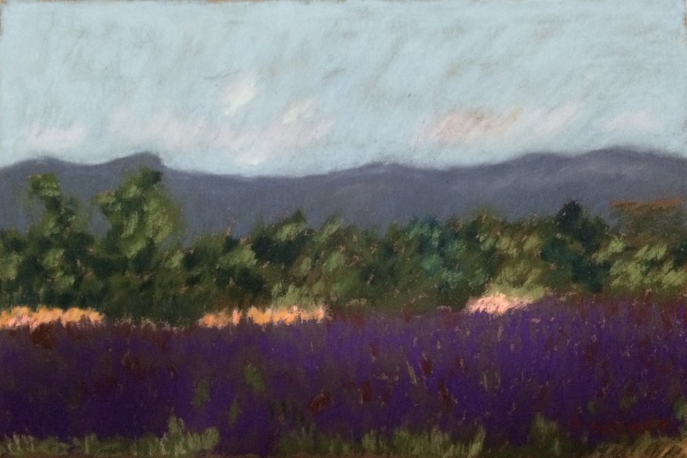 Lavender Field 8 x 10 SOLD