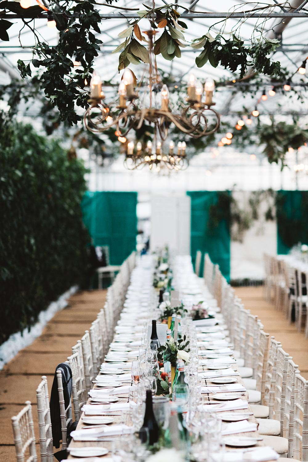 34-wilde-thyme-wedding-event-florist-flowers-green-house-wedding-ceiling-decor.jpg