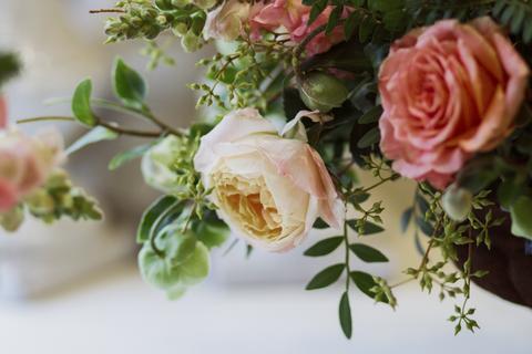 Blog Flowers.jpg