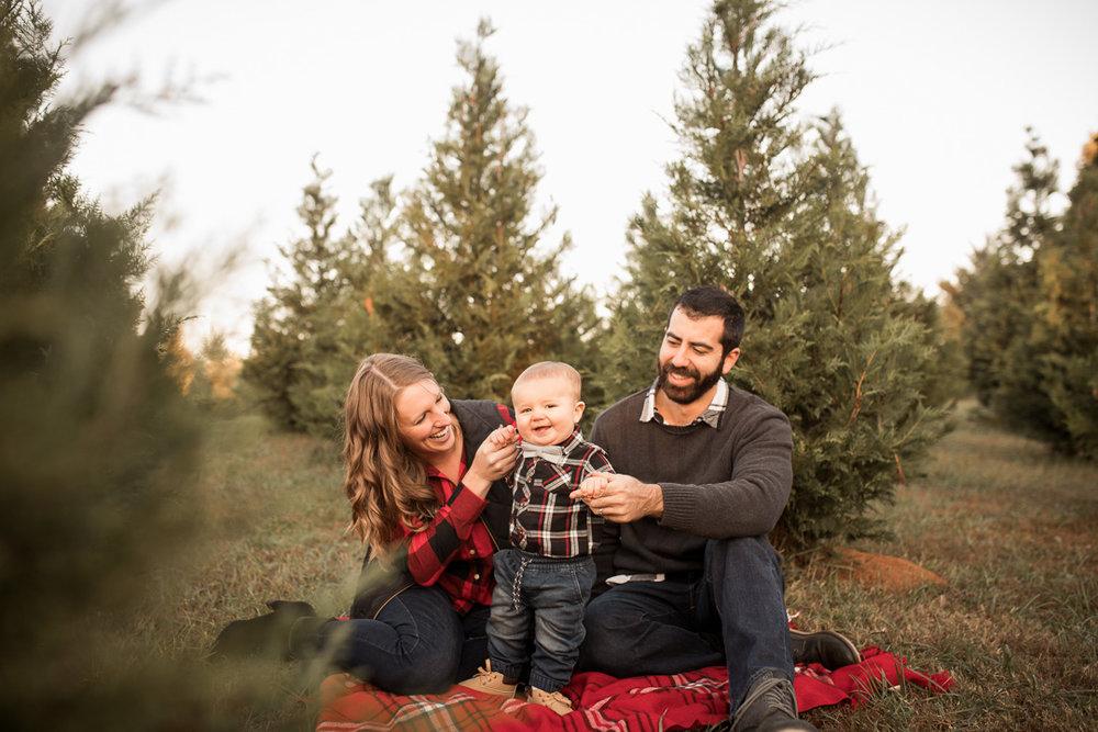 christmas tree farm-4.jpg