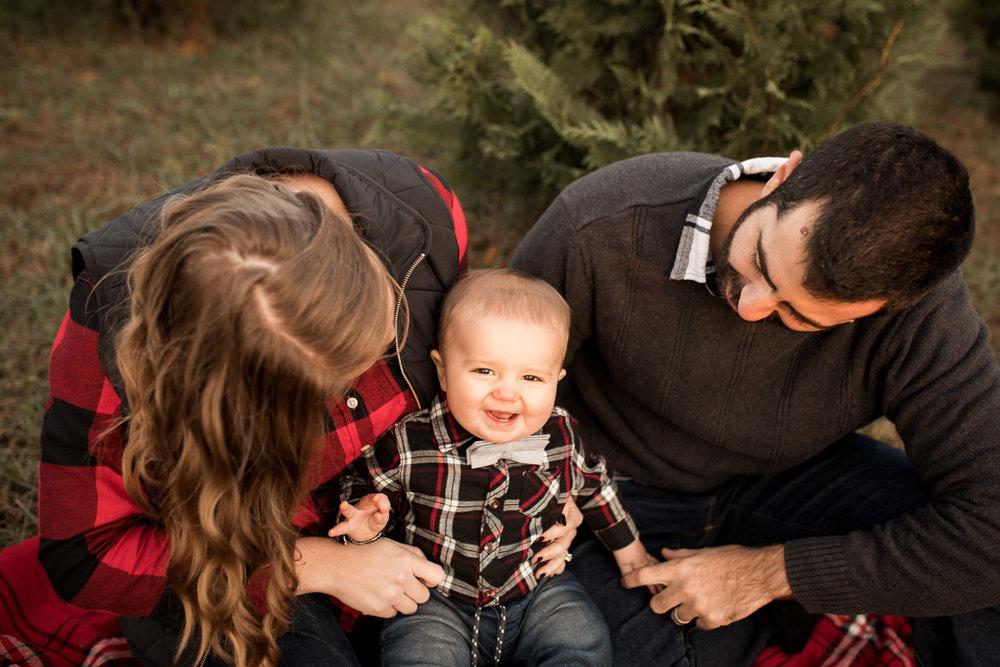 christmas tree farm-4-2.jpg