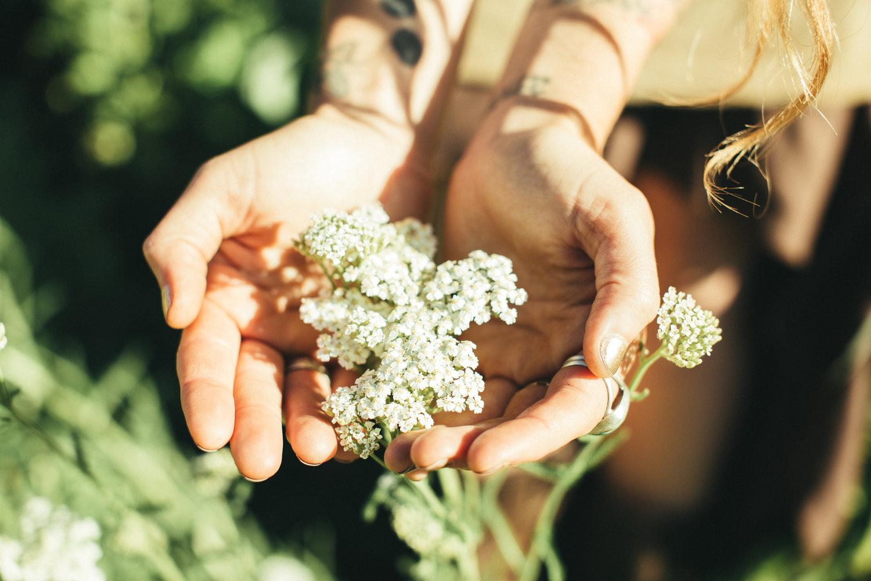 Estrogen Dominance: What's The Deal? — Mana Medicinals