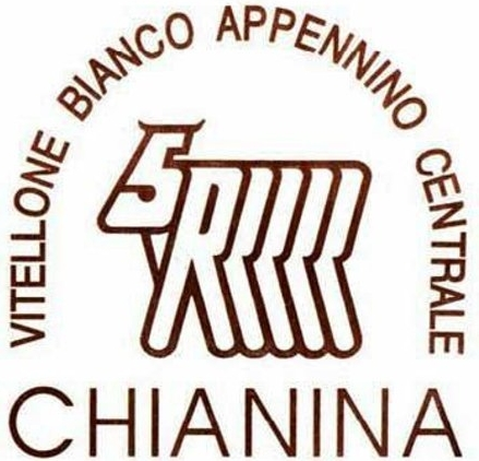 chianina-5-rrrrr.jpg