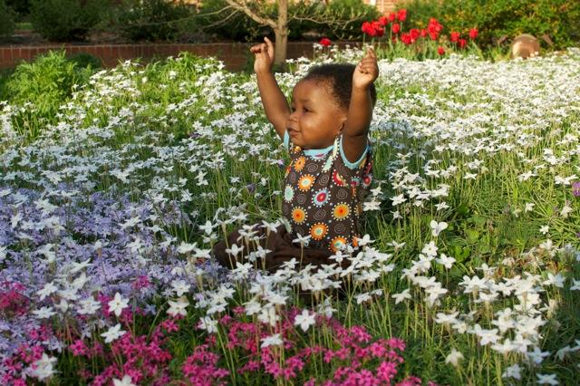 o-flowers21.jpeg