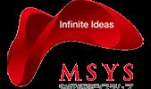 msys_169-1-169x100.png