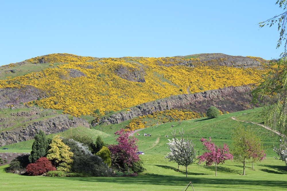 View from Holyroodhouse Palace gardens of Arthur's Seat.