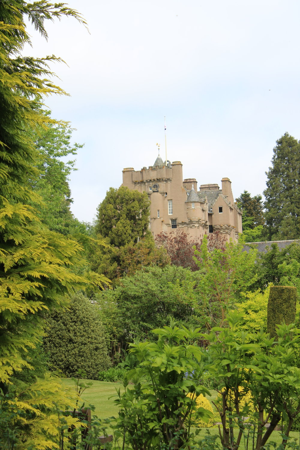A view of the Castle from the gardens