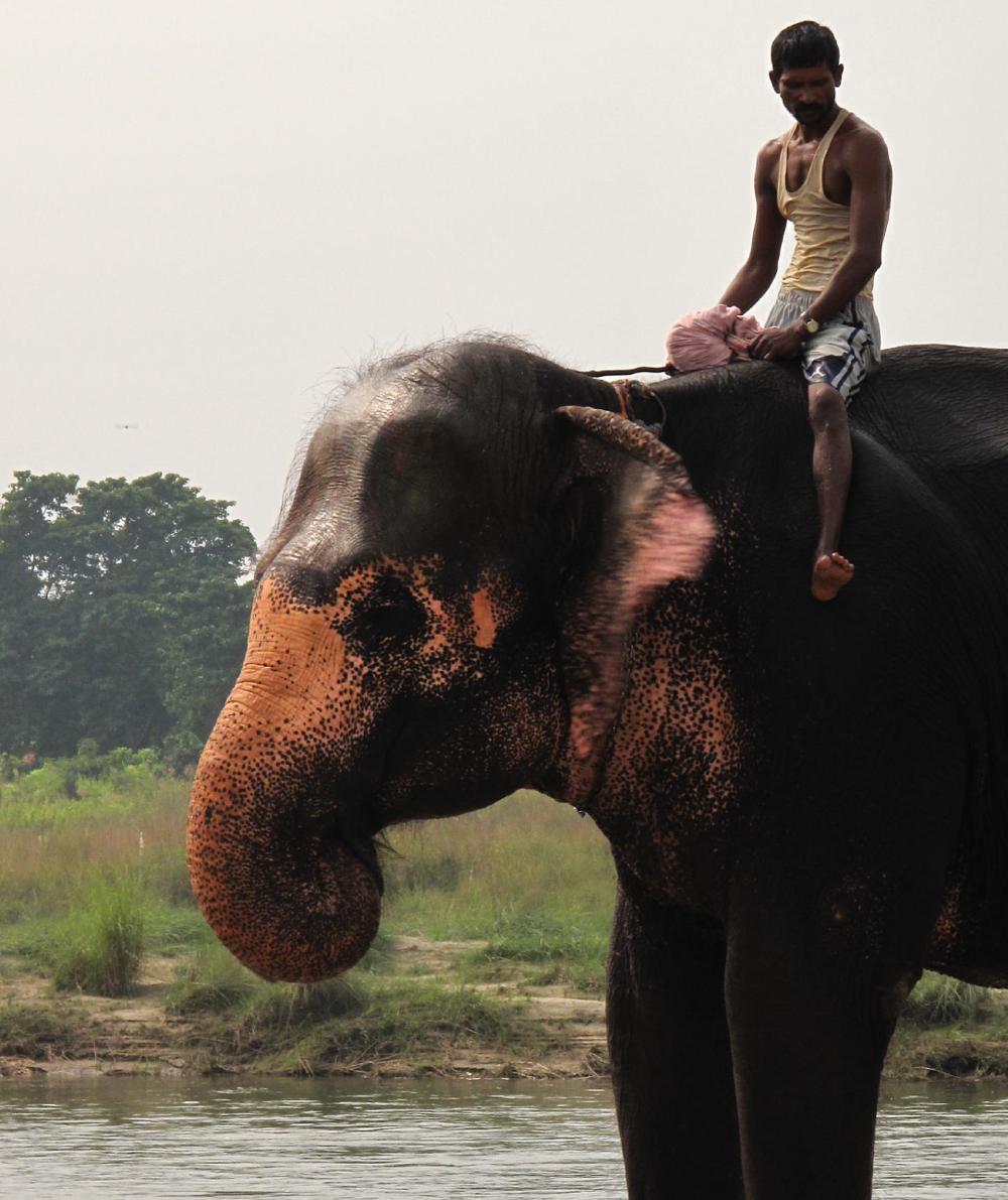 life_in_srilanka