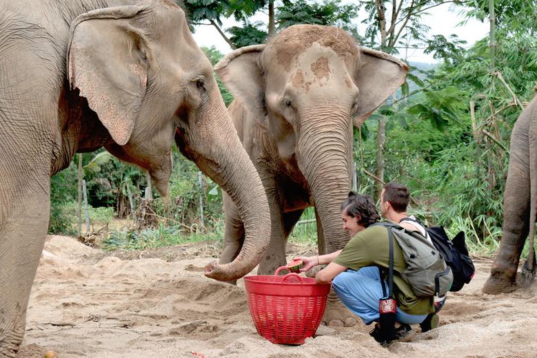 Thailand - elephant sanctuary.jpg