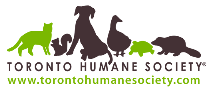 in-support-of-toronto-humane-society-adpong-ping-pong.png