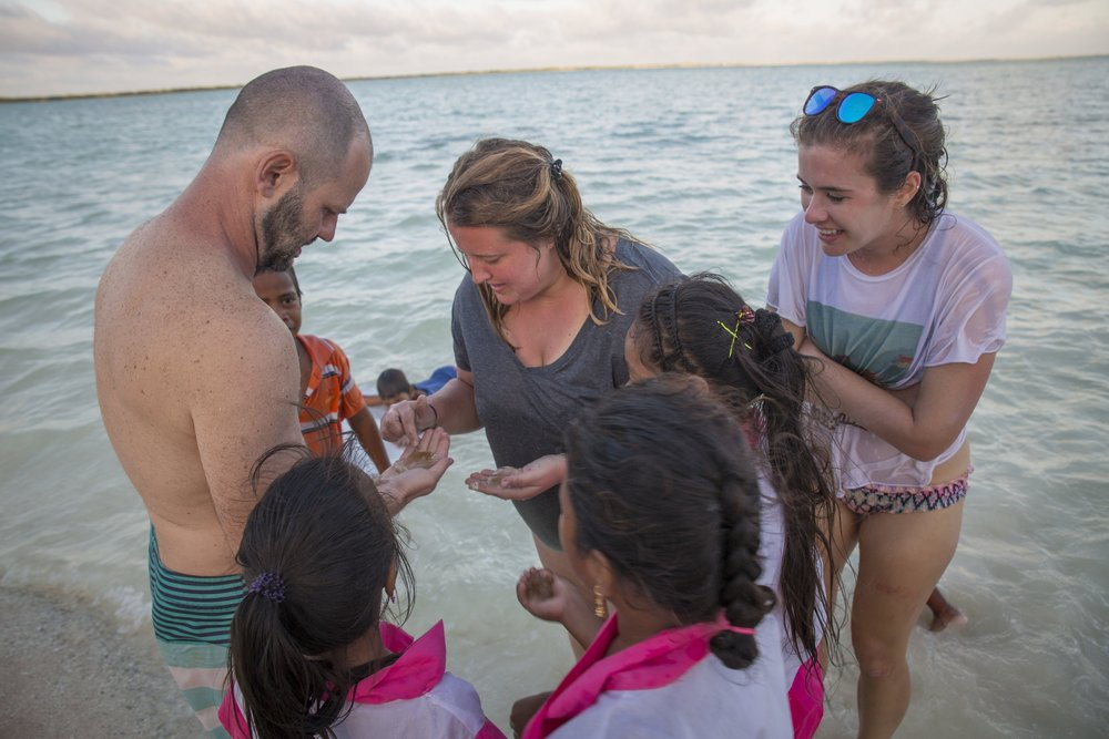 Identifying intertidal creatures in Kanton, Kirabati