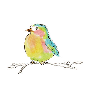Children's Colorful Bird Illustration