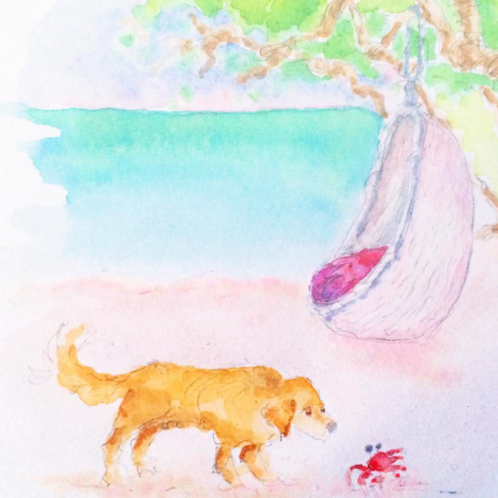 Dolby-n-me-Dog-Meets-Crab-Illustration copy.jpg