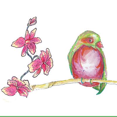 400-flirty-bird-2.jpg