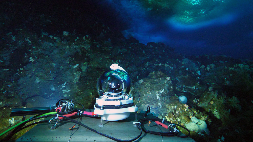 The MOO's self-cleaning, live-streaming HD video camera.  The camera, high-resolution microphone and ocean condition sensors capture the happenings occurring in its icy realm in real time.