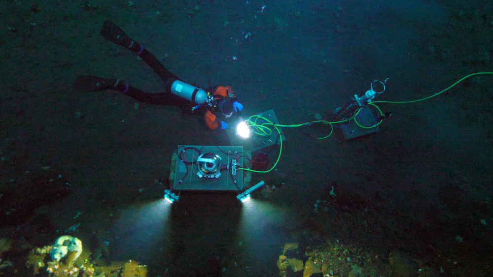 The MOO, including camera, lights, seawater condition sensors and hydrophone was installed on the sea floor in McMurdo Sound, Antarctica in November 2017.