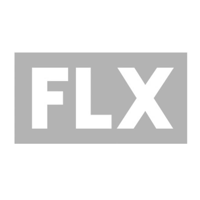 FLX_logo.png