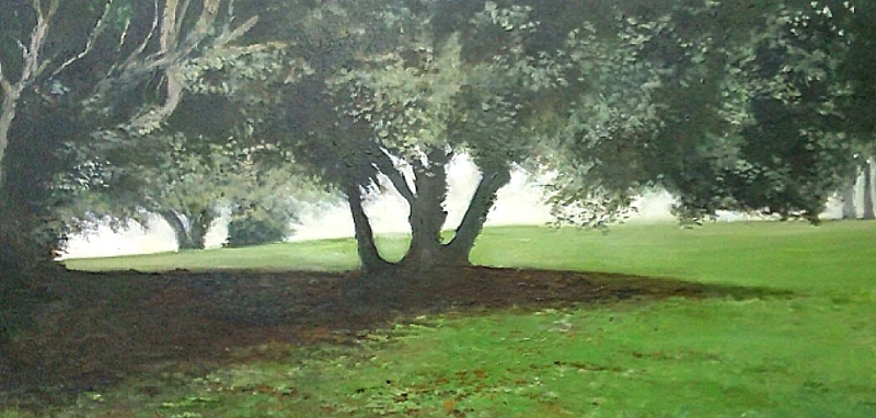 trees 4 sm.jpg