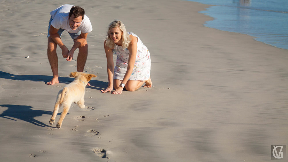 An engaged couple call their excited puppy over to them on a beach