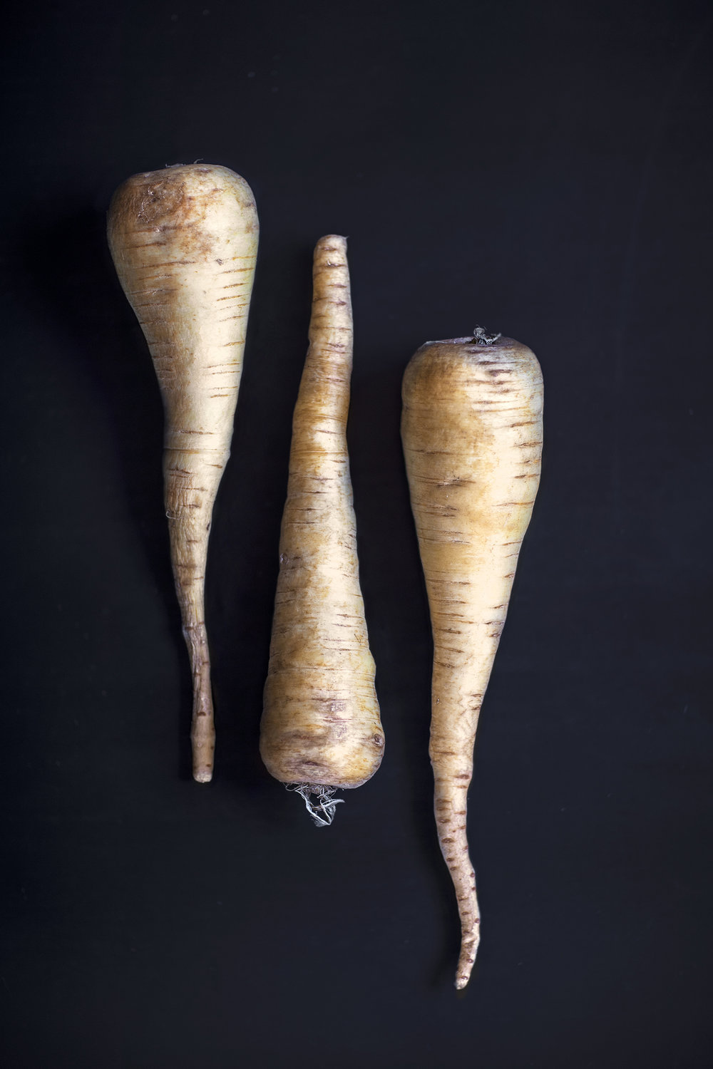parsnip photo Stefania Giorgi