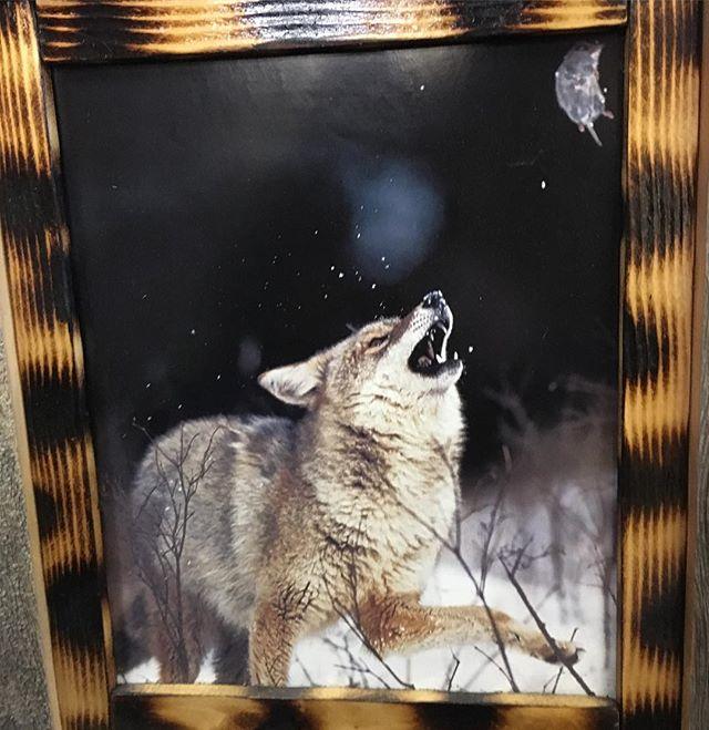 I'm having remorse for not buying this. Classic Wolfie.  @peintre.de.mots @lily.prentice @ilana_makes_stuff #makeamericacripagain