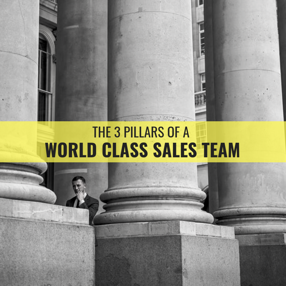 The Three Pillars Of Building a World Class Sales Team (1).png